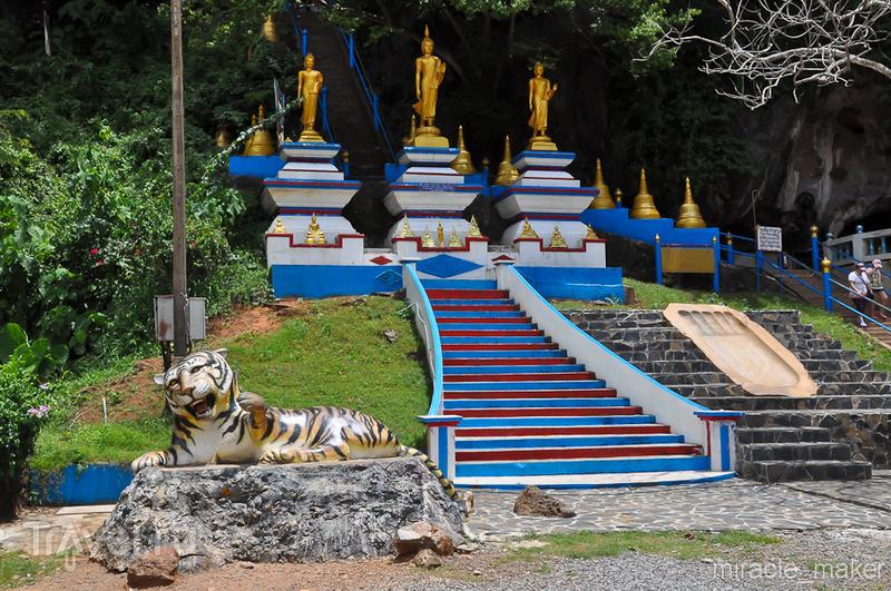 1237 ступеней к просветлению / Фото из Таиланда