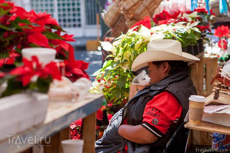 Мехико, декабрь 2012 / Фото из Мексики