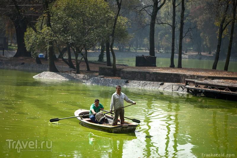 Парк Чапультепек, Мехико / Фото из Мексики