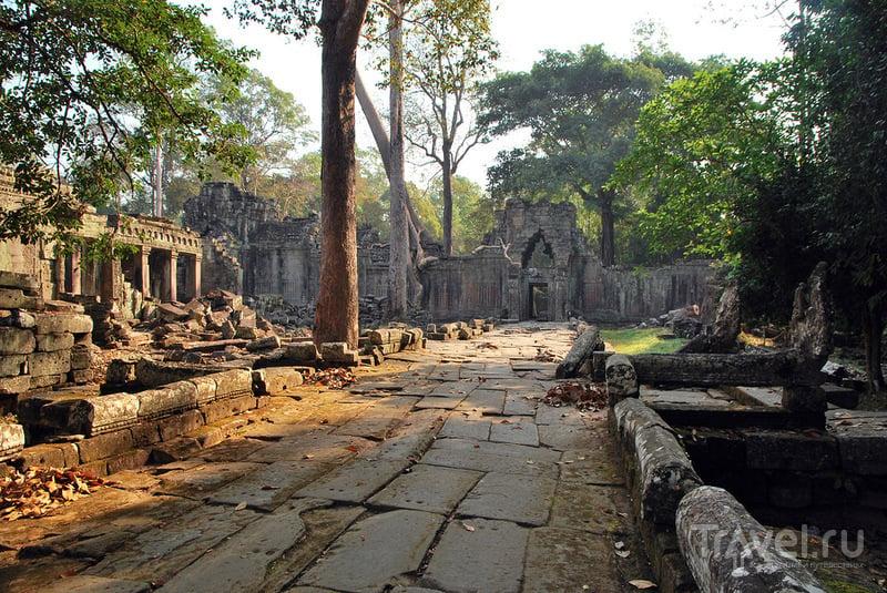 Ангкор, еще Ангкор / Фото из Камбоджи