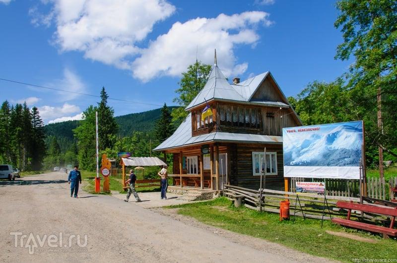 В Карпатском биосферном заповеднике, Украина / Фото с Украины