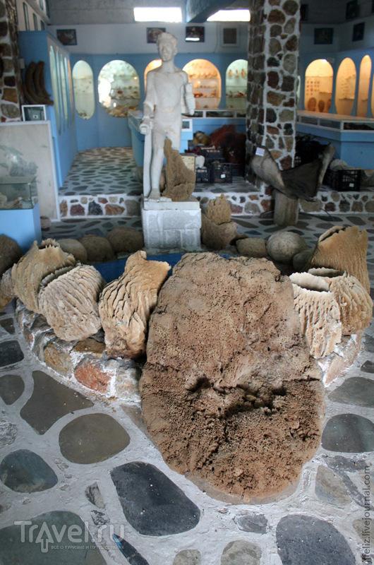 Музей морских чудес / Греция