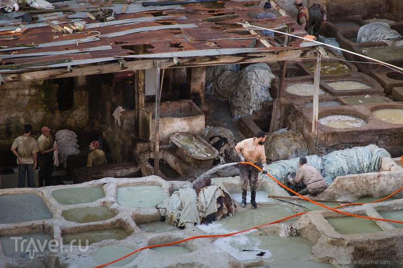 Марокко, Фес, кожевенные мастерские / Фото из Марокко