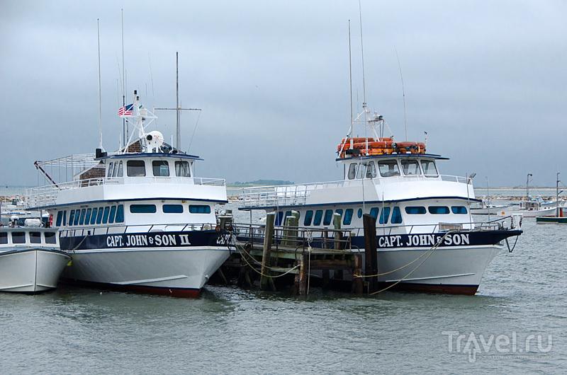 Залив Кейп Код в Плимуте, США / Фото из США