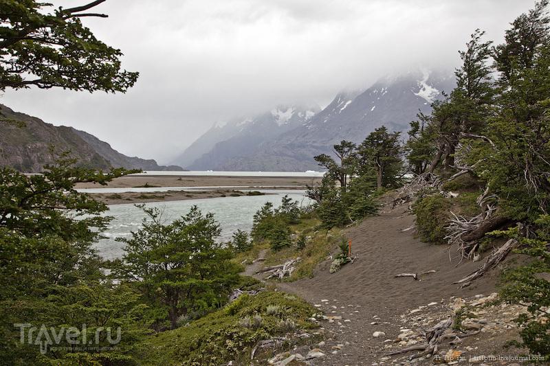 Озеро Грэй, Чили / Фото из Чили