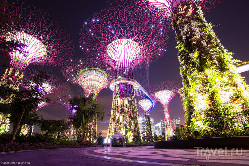 Gardens by the Bay - еще одно чудо света в Сингапуре / Сингапур