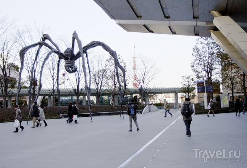 Район Роппонги в Токио, Япония / Фото из Японии