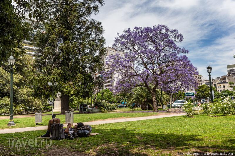 Buenos dias, Buenas noches, Buenos Aires / Фото из Аргентины