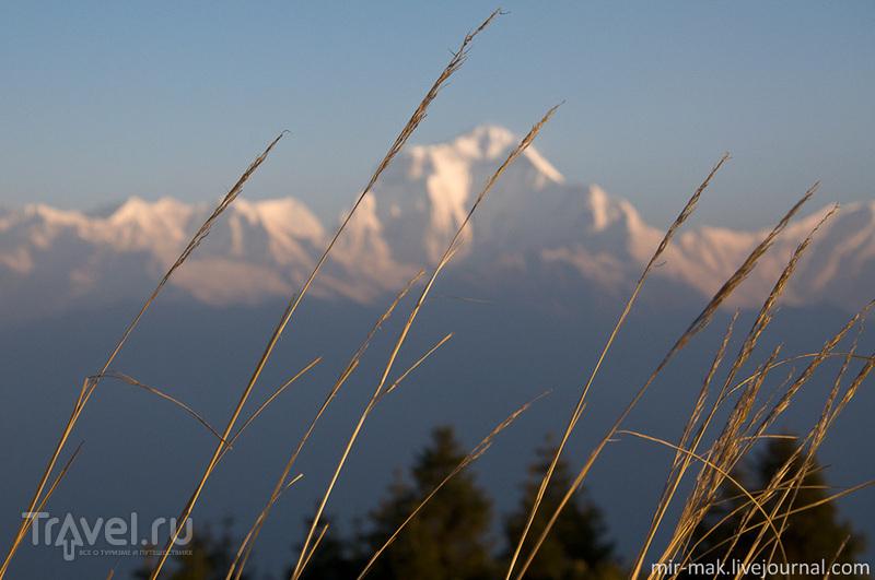 Рассвет над Аннапурной. Трек на Пун-Хилл / Фото из Непала