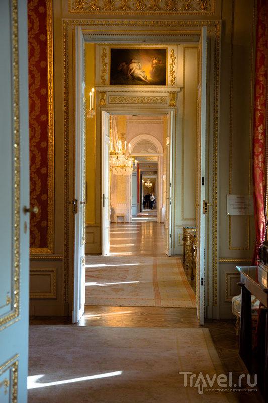Галерея Альбертина в Вене, Австрия / Фото из Австрии