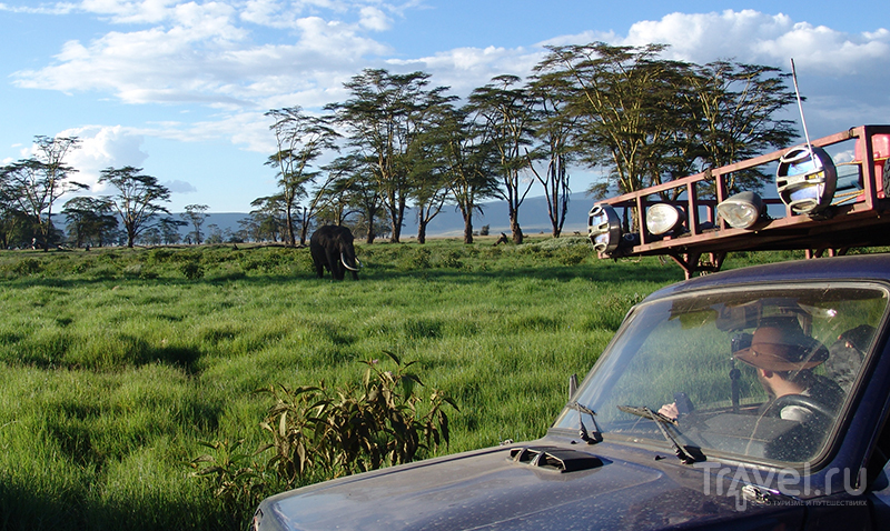 Случай в Нгоронгоро / Танзания
