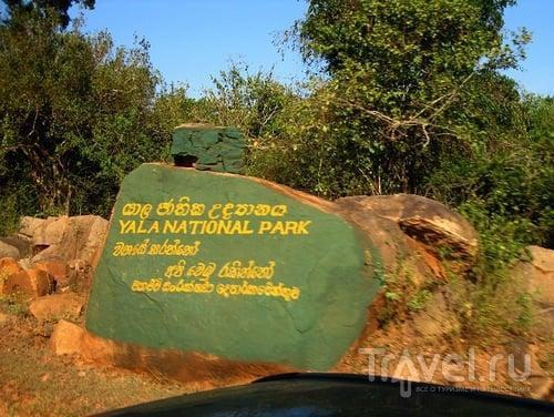 Шри-Ланка: Заповедник Яла / Шри-Ланка