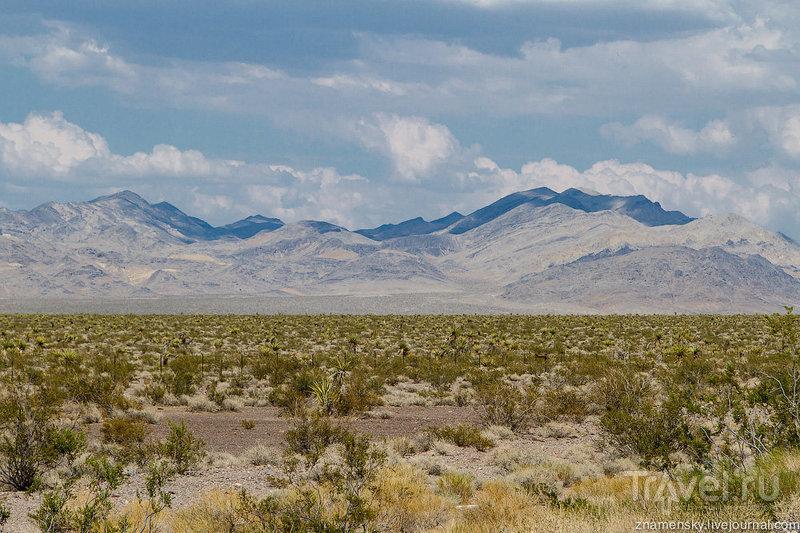 По пути в Долину Смерти / США