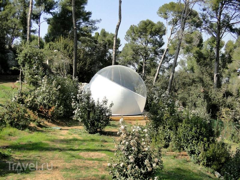 Днем из прозрачных боксов отеля Attrap'Reves можно любоваться лесными пейзажами / Франция