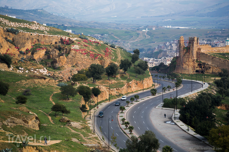 Марокко, Фес: по улицам медины / Фото из Марокко