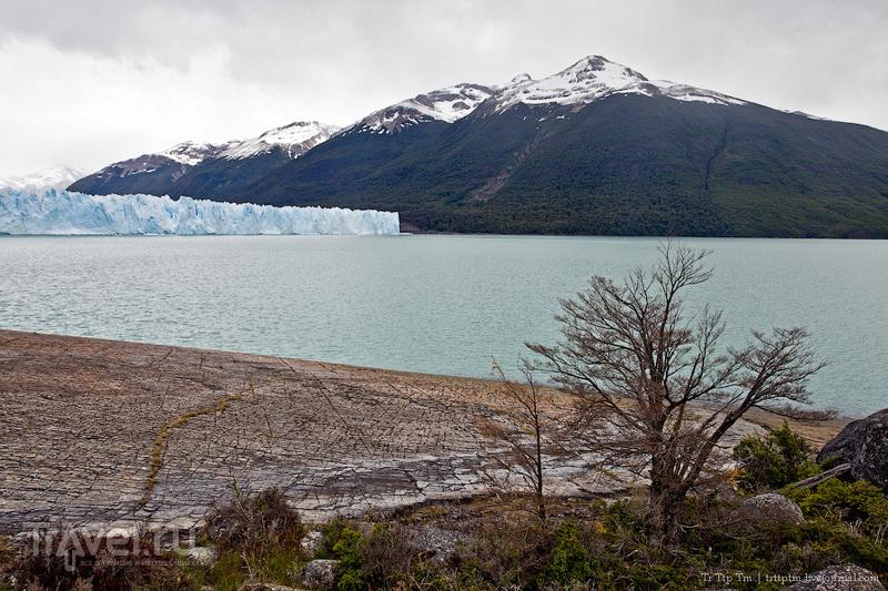 Устоявший перед потеплением. Ледник Перито-Морено / Фото из Аргентины