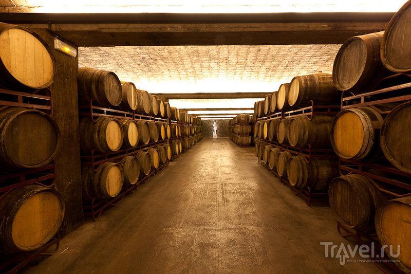 Freixenet: экскурсия на завод испанского шампанского / Испания