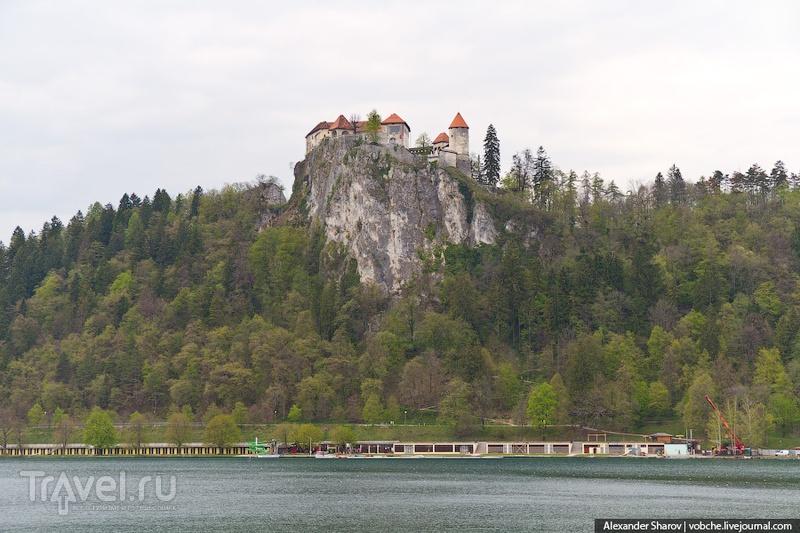 Бледский замок, Словения / Фото из Словении