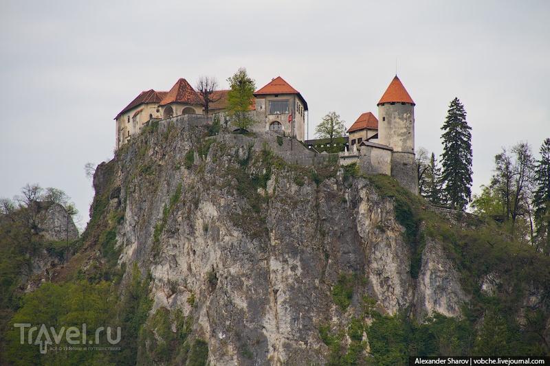 Окрестности озера Блед / Фото из Словении