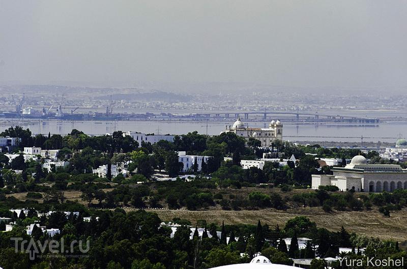 Восточная сказка Сиди-бу-Саид / Фото из Туниса