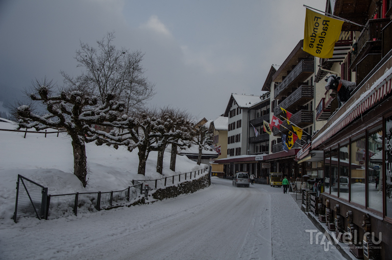 Пасмурный день в Венгене / Фото из Швейцарии