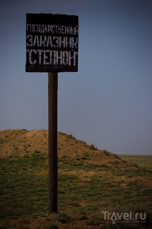 Астраханское степное Сафари / Россия