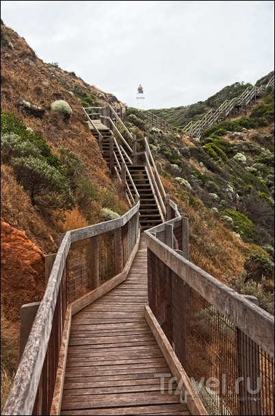Австралия, полуостров Морнингтон / Фото из Австралии