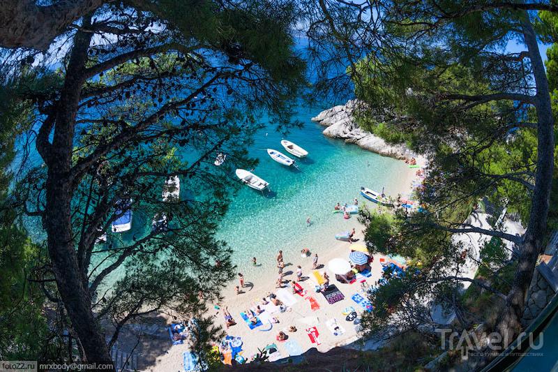 Пляж Подрачи в Бреле, Хорватия / Фото из Хорватии