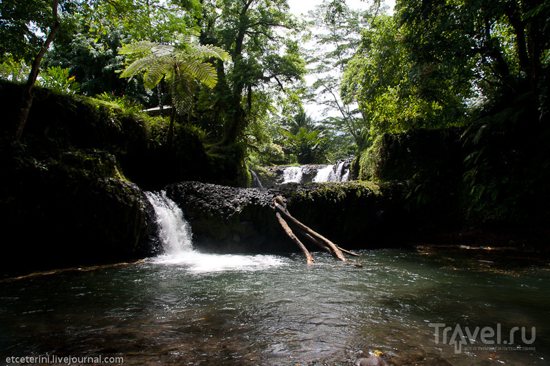 Национальный парк О-Ле-Пупу-Пуе, Западное Самоа / Фото с Западного Самоа