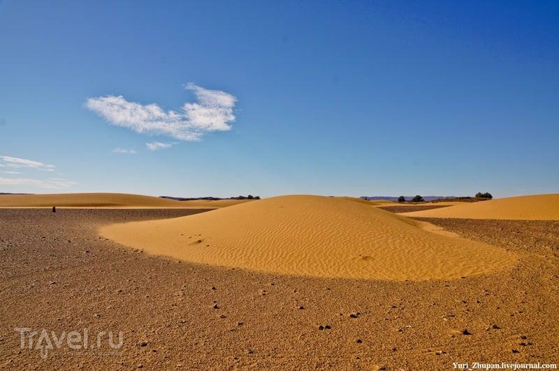 В пустыне Сахара, Марокко / Фото из Западной Сахары