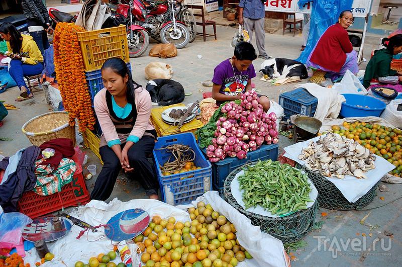 В городе Катманду, Непал / Фото из Непала