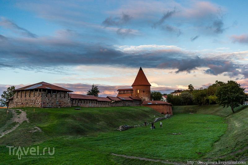 Каунасский замок в Каунасе, Литва / Фото из Литвы
