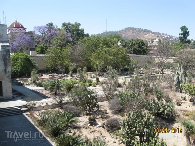 Мексика. Город Оахака / Мексика