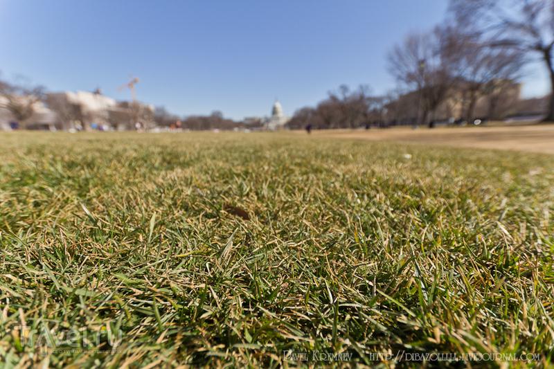 Вашингтон - город чиновников и патриотизма / Фото из США