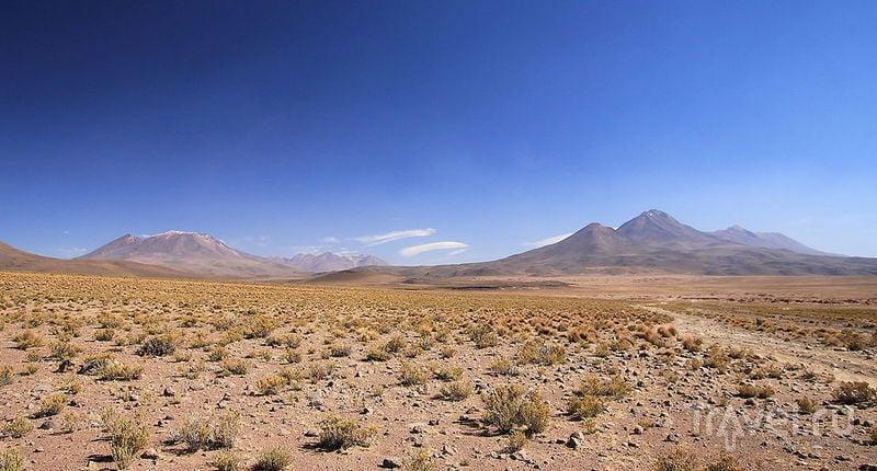 На плато Альтиплано, Боливия / Фото из Боливии