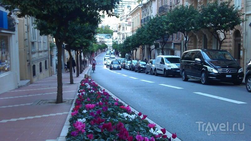 Не все золото, что в Монако / Монако