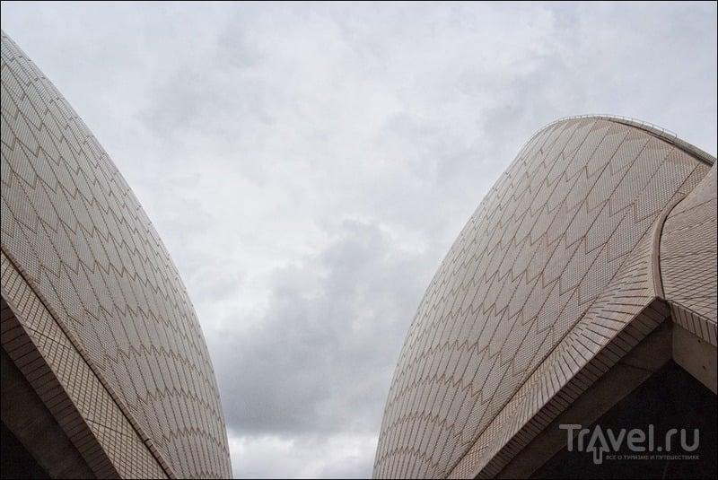 Сидней: Опера, остров Мэнли и круиз по заливу / Фото из Австралии