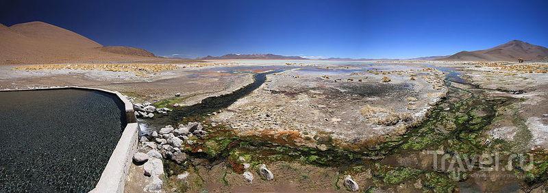 В лагуне Чальвири в Национальном заповеднике Эдуардо Авароа / Фото из Боливии