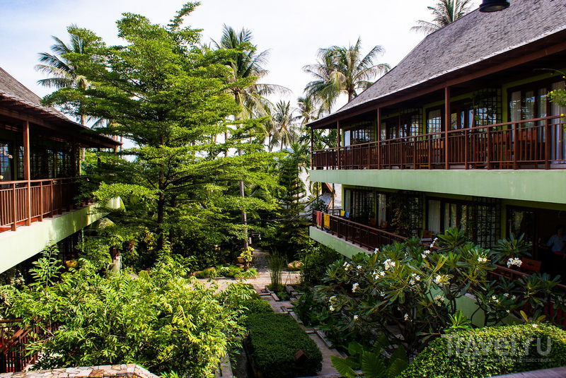 Отель Baan Haad Ngam на острове Самуи, Таиланд / Фото из Таиланда