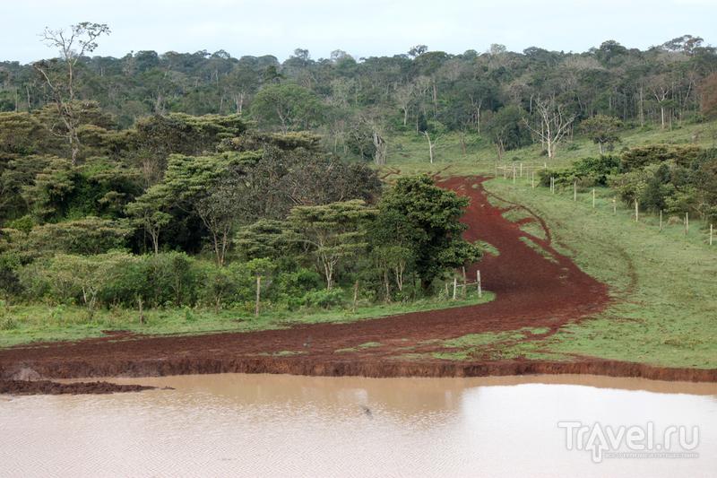 Национальный парк Абердар, Кения / Кения