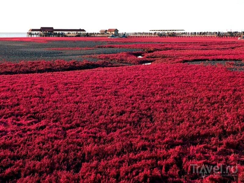 Наиболее колоритные пейзажи заповедника Шуантай-Хэкоу открываются во время отливов, Китай / Китай