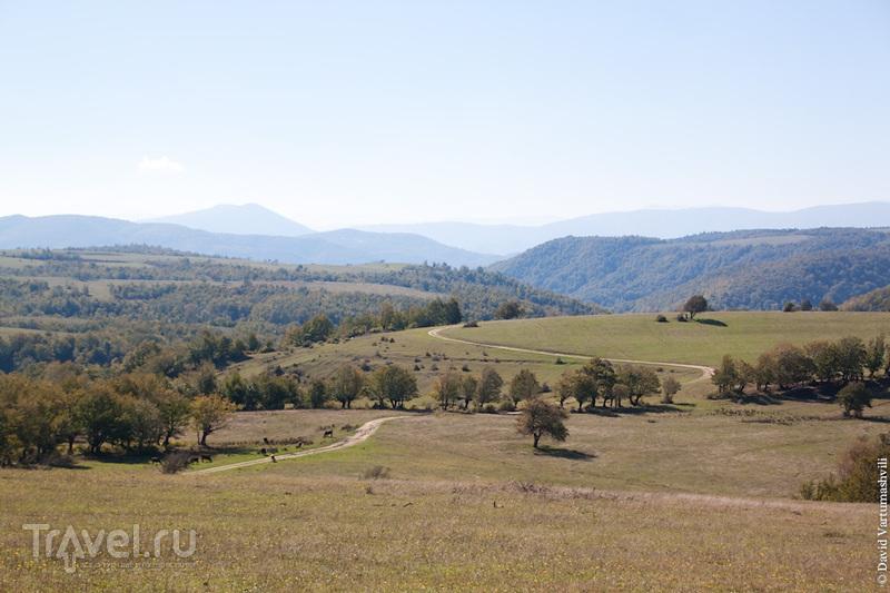 Грузия. Кацхи / Грузия