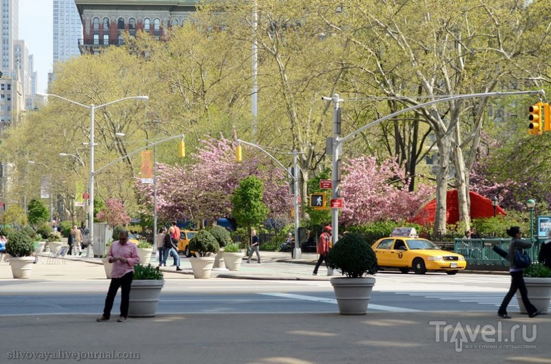 Нью-Йорк. Первое свидание / США
