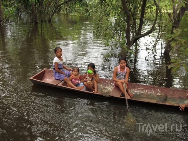 Записки пассажира грузового судна из Манауса в Белем / Бразилия