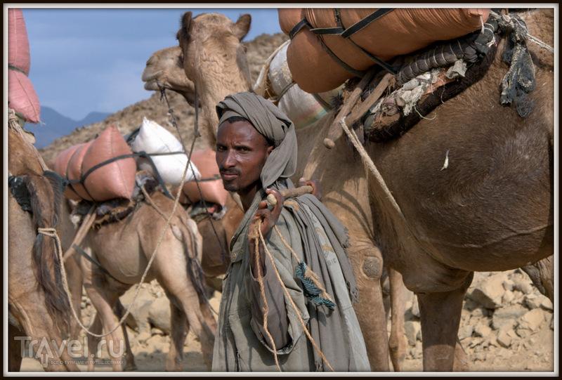 Mekele - Hamede Ela / Фото из Эфиопии