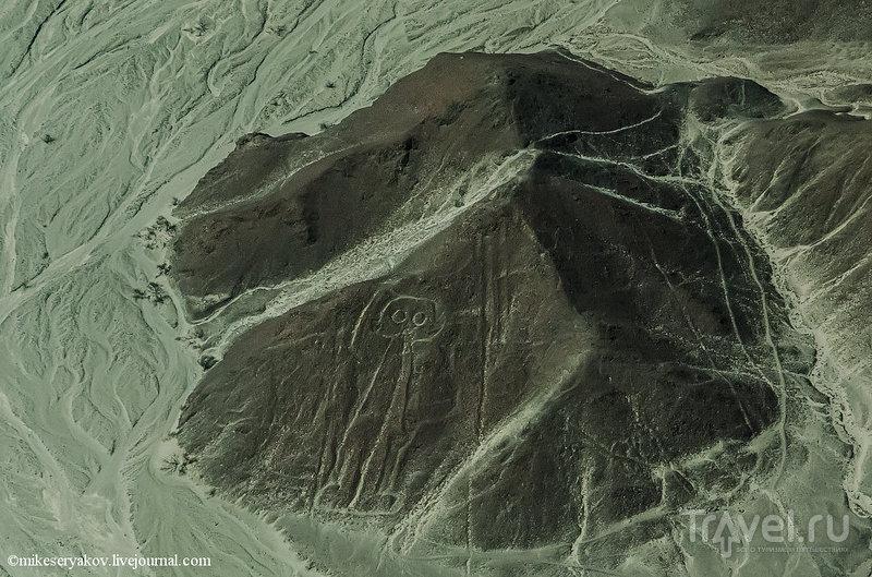 Загадка линий Наска / Фото из Перу