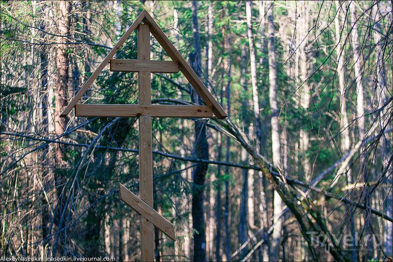 Реконь. Долгая дорога к храму / Фото из России