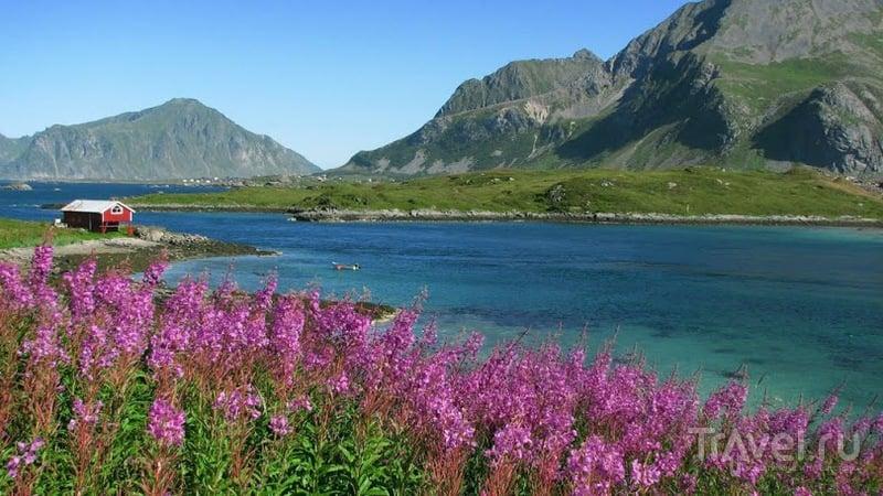 Лофотенские острова, Норвегия / Фото из Норвегии