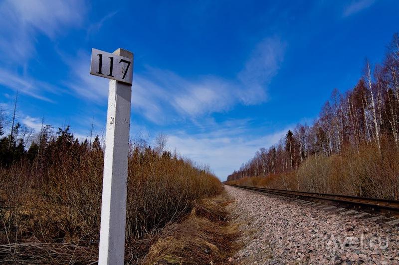 По следам весны. Вокруг Ладоги / Фото из России