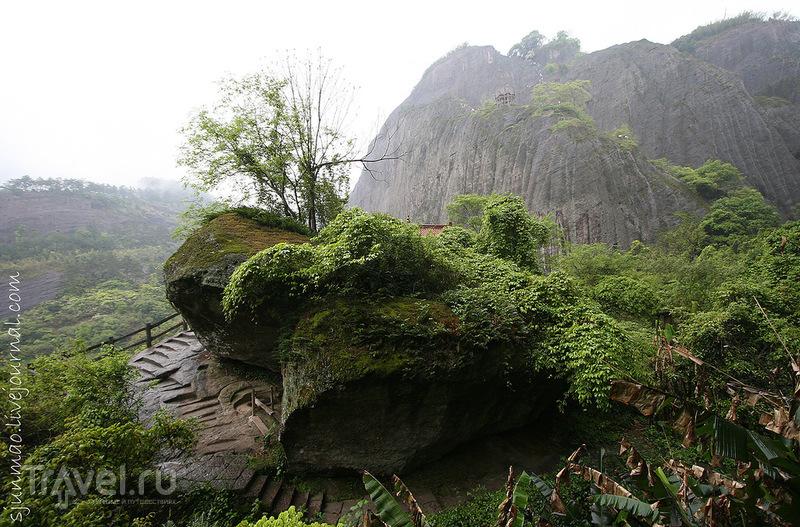Горы Уишань, Китай / Фото из Китая